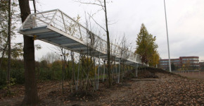 Der wachsende Steg im Januar 2014 in Kamen © Bureau Baubotanik