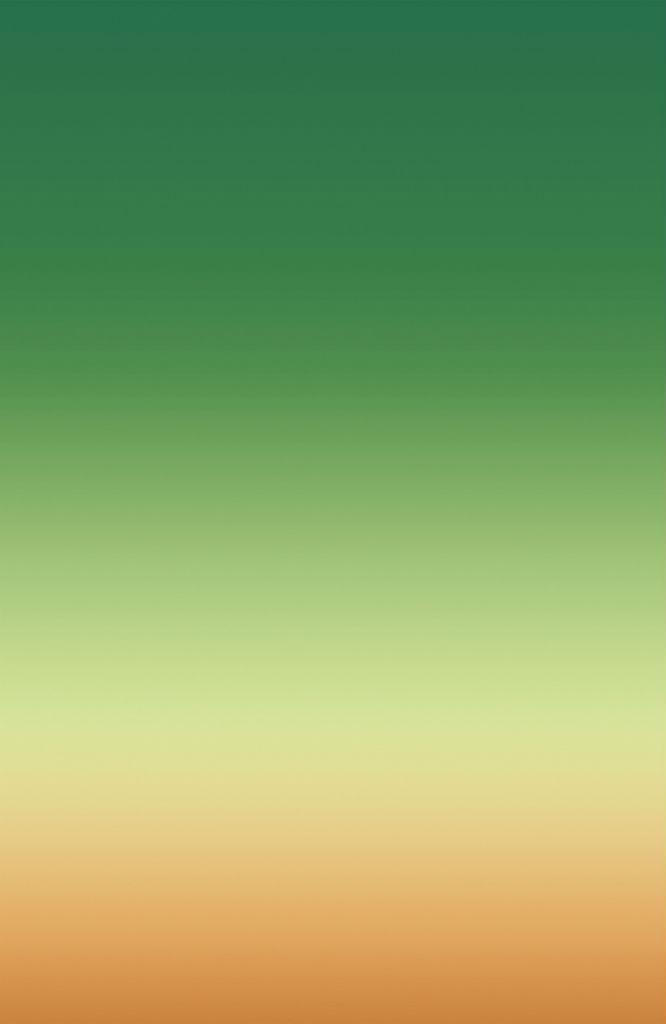 Stefan Heyne_SEAT 21A_2013_C Print auf Alu Dibond_130x200cm