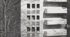 Rik de Boe o.T., 2013, Kohle auf Papier, 76,5 x 53,5 cm